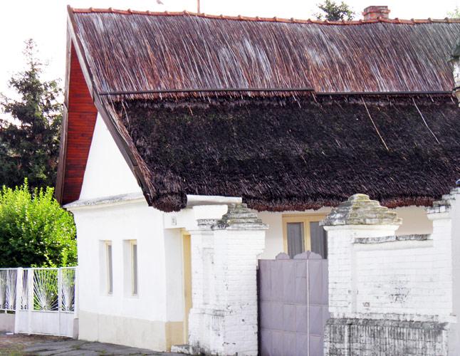 Az utolsó nádfedeles ház