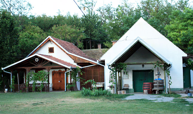 A falu népe főleg szőlőművelésből élt